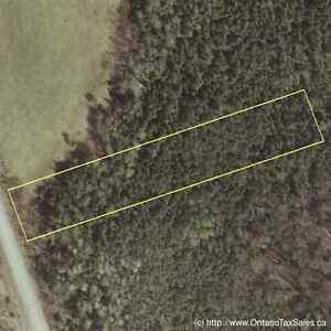 Recreational and  Forest Land for Sale