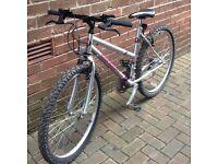 Concept Quicksilver mountain bike ladies