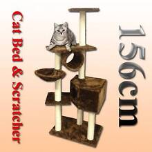 Warehouse pickup 156cm cat tree house cat scratching post pole Riverwood Canterbury Area Preview