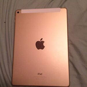 iPad Air 2 16gb gold with life proof case