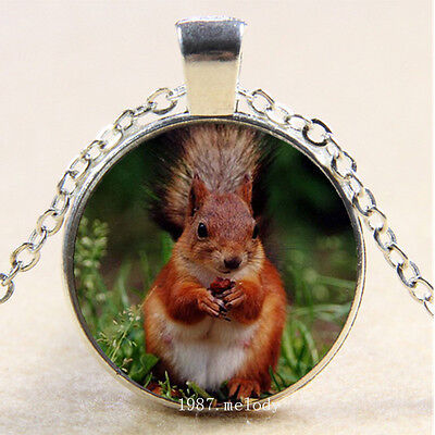 Photo Cabochon Glass Silver Charm Pendant Necklace(Red squirrel in grass - Grass Photo Charm