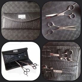 Haito Basixs hairdressing scissors and thinning scissors & case