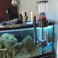 140GL aquarium with 3 stage  sump built into the tank