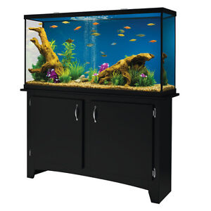 55 GALLON FISHTANK WITH BASE CABINET AND FISH