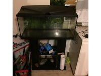 Fish tank 2.5ft long