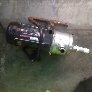 Wayne Lawn Sprikler& Utility Pump