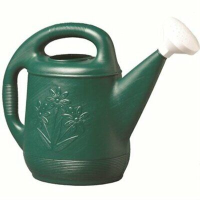 Novelty Classic Watering Can, Green, 2 Gallon