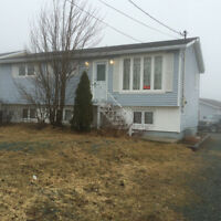 Home For Sale In Torbay