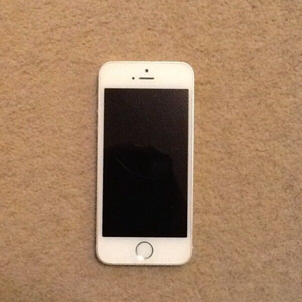iPhone 5s (Silver) with Charger and 4 cases