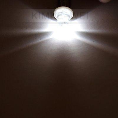 2 x White LED Side Light Bulbs T4W Bayonet BA9S 24V NEW