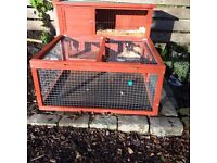 Rabbit with 2 tier cage and indoor cage