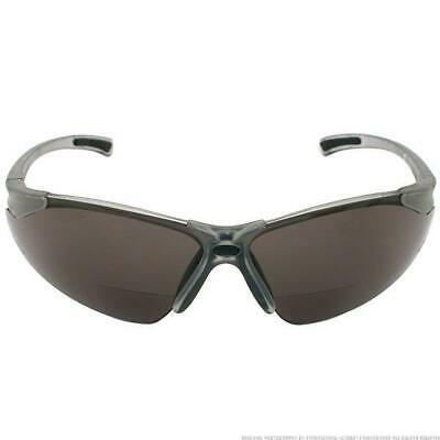 Radians C2-220 Bi-Focal Reading Safety Glasses with Smoke 2.0 (Safety Glasses With Reading Lens)