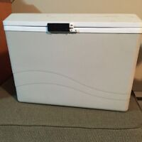 Portable cooler/fridge