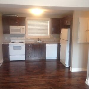 1 Bedroom Basement Apartment in the Goulds