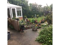 Detached 3 bed chalet bungalow in old Hartburn stockton