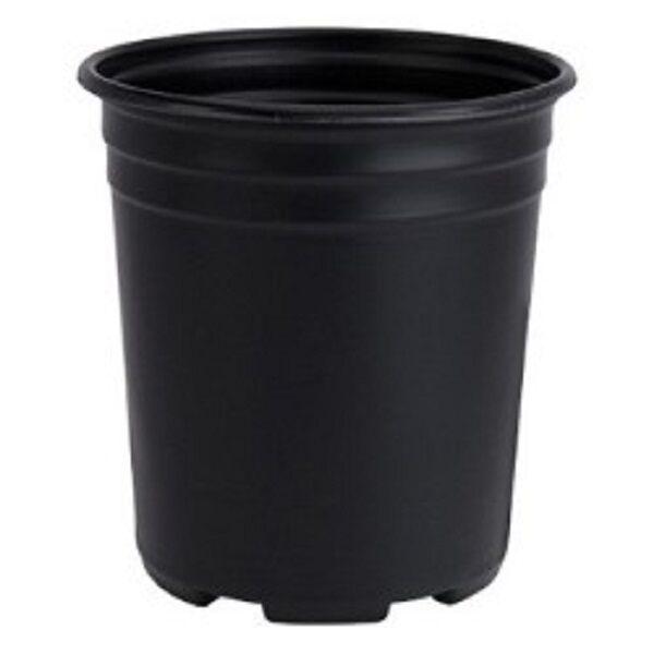 3 Gal Pots Ebay