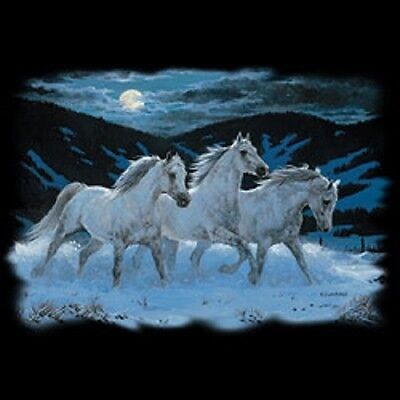 Arabian Horse T Shirt Heat Press Transfer For Shirt Sweatshirt Tote Fabric 243g
