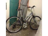 Giant bike