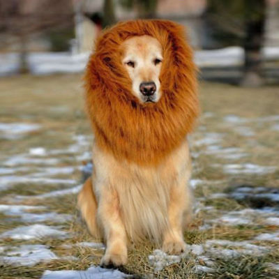 Pet Dog Costume Lion Mane Wig For Halloween Clothes Fancy Dress Up - Lion Mane For Dog