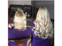 Stunning Hair Extensions FULLY MOBILE-SAME DAY APPTS AVAILABLE 💕