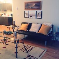 Roommate Wanted: Quiet & Pet-friendly Condo