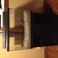 19 Gallon Fish Tank