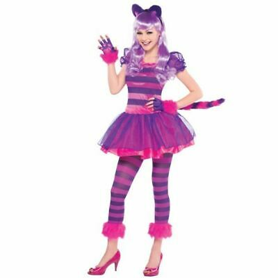 Cheshire Cat Alice In Wonderland Teen Girls Fancy Dress Costume 14-16yrs - Guy In Fairy Costume
