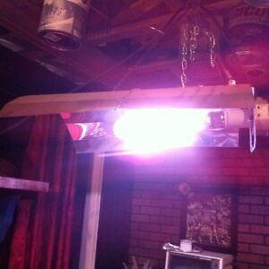 Lampes horticole solaris à rendement élevé 1000wattts