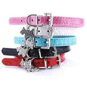 Puppy Collar Inglewood Stirling Area Preview
