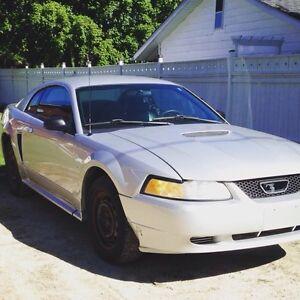 2000 Mustang V6 Manual Transmission