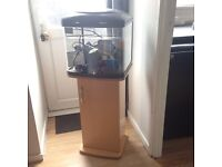 Fish tank on stand with accessories. Working condition