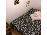 Great Double Bedroom in a nice property! Real Pics, Real Room!
