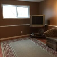 Basement suite in briddlewood move in Dec1 perfect for couple