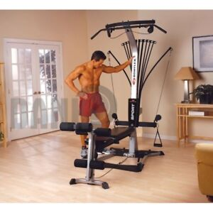 BowFleX SporT with  310 Pound Upgrade gym weights exercise