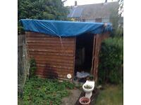 Free large shed
