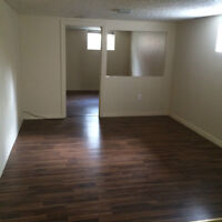 RENOVATED 2 BD BASEMENT APPARTMENT FOR RENT