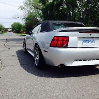 2000 Ford GT mustang convertable well taken care of.