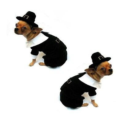 High Quality Dog Costume PILGRIM BOY COSTUMES Dress Your Dogs For Thanksgiving ](Pilgrim Costume For Dogs)