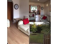 Enniskillen house to rent