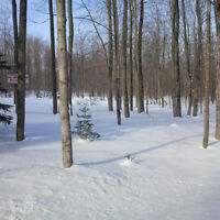 Beautiful 9.32 Acre Building Lot, 12 Minutes from Waterloo