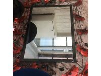 Lovely poppy mirror