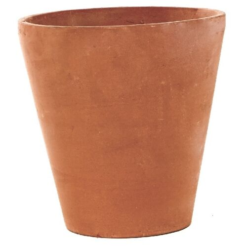 Strawberry Plant Pot Ebay