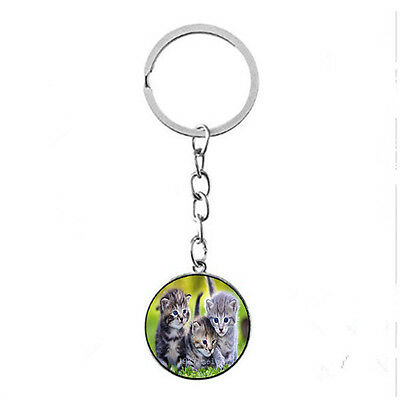 Vintage Glass photo Cabochon charm silver Matal Key ring(cute kitten at grass) - Grass Photo Charm
