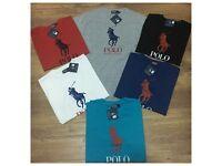 Ralph Lauren tshirts Available wholesale (OZEY)