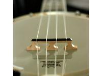 Banjo Ukulele - Gold Tone