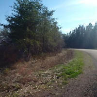 LARGE 4.5 ACRE LOT IN IRISHTOWN WITH AMAZING VIEW***NEW PICTURES