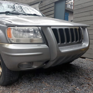 Grand Cherokee 1999-2003 (Limited) Molded Brush Guard