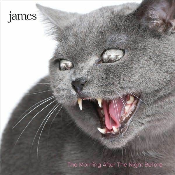 JAMES : MORNING AFTER THE NIGHT BEFORE (CD) Sealed