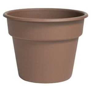 Looking for extra plant pots