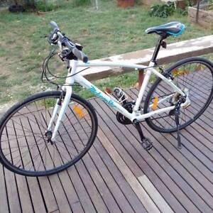 Malvern star sprint bike Orange Orange Area Preview
